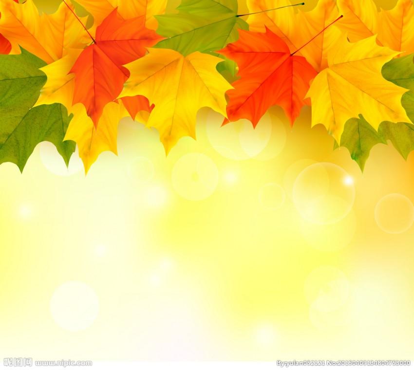 Autumn PowerPoint Wallpaper Background