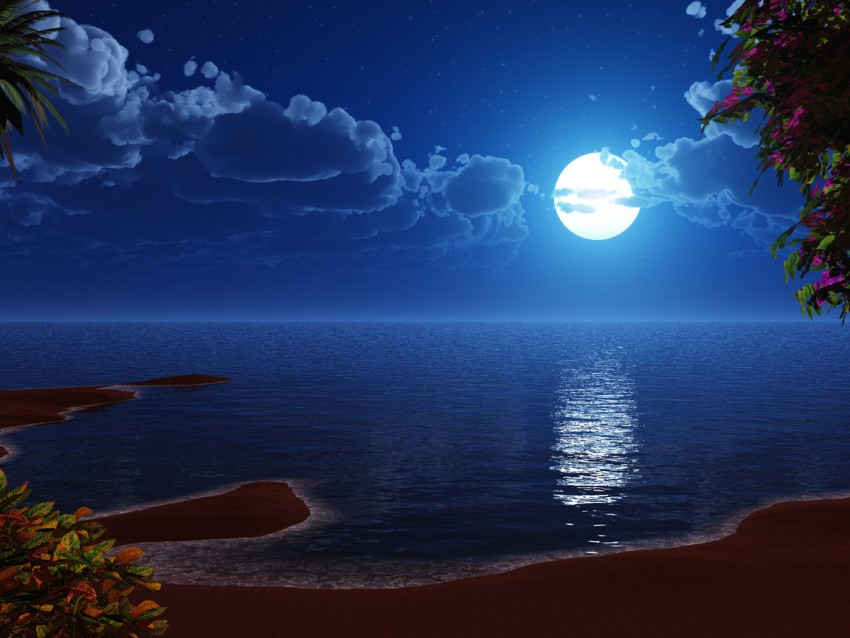 Beach Night With Moon PowerPoint Background Templates