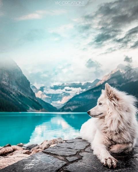 Beautiful Picsart Photo Editing Background