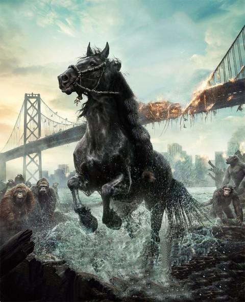 Black Horse CB Editing Background