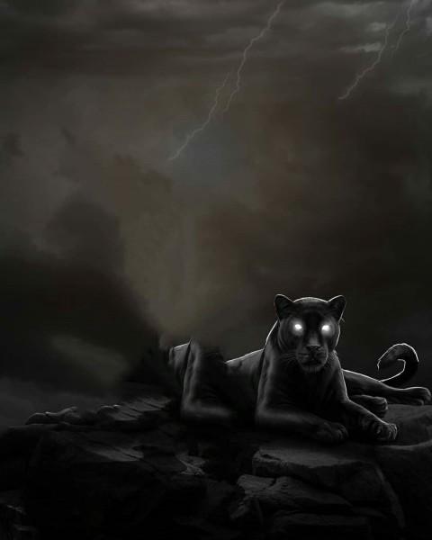 Black Panther PicsArt Editing HD Background