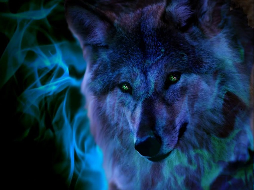Blue Wolf Background Full HD Wallpaper Download
