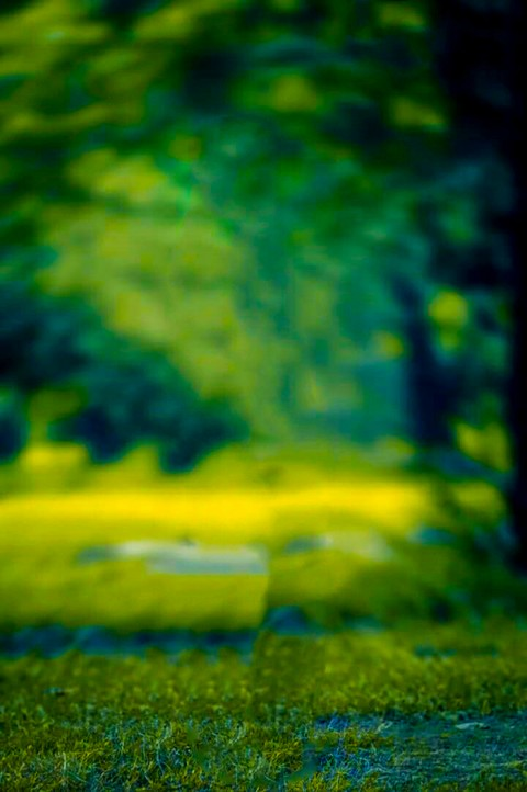 Blur CB Background For Lightroom Editing