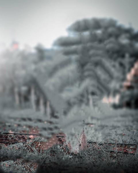 Blur Dark CB Background Download