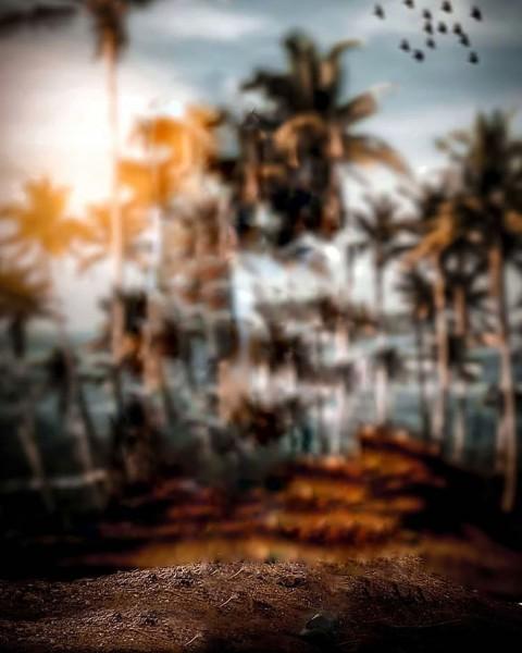 Blur Editing Snapseed Background Full Hd