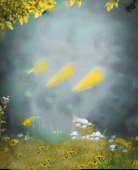 Blur PicsArt Nature Editing Background HD