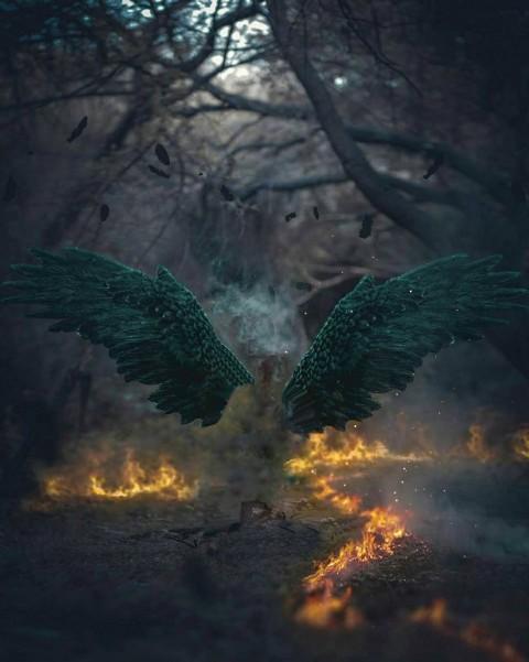 Fire Devil Wings PicsArt CB Editing  Background HD
