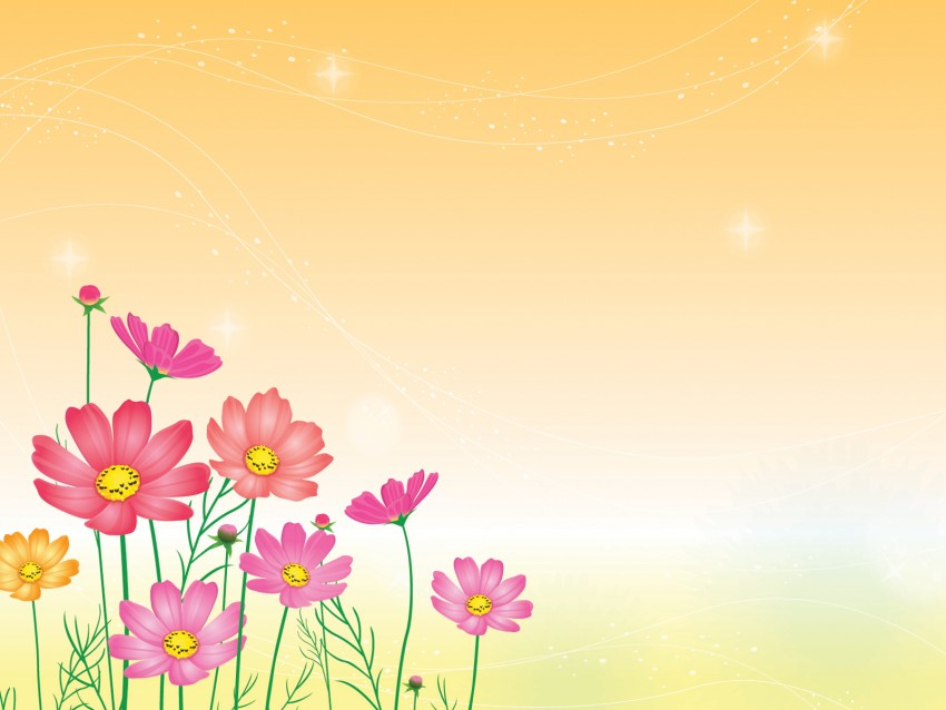 Flower PowerPoint Background Image Photo