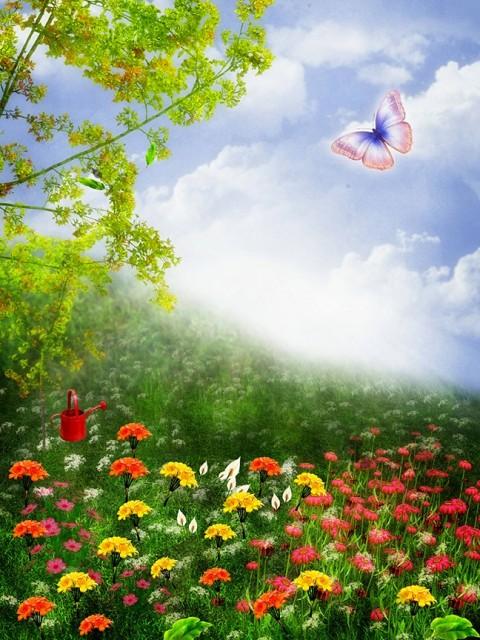 Flower Studio Background HD Download