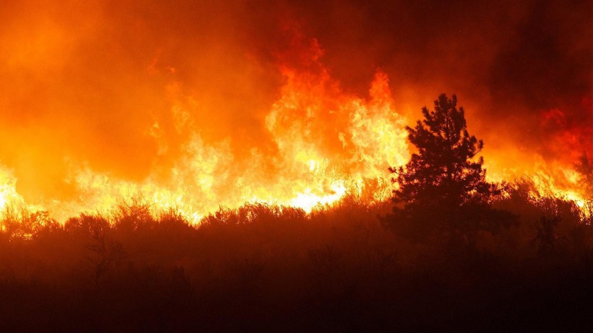 Forest Fire High Resolution Background Images Download