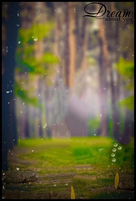 Forest Picsart CB Background Download