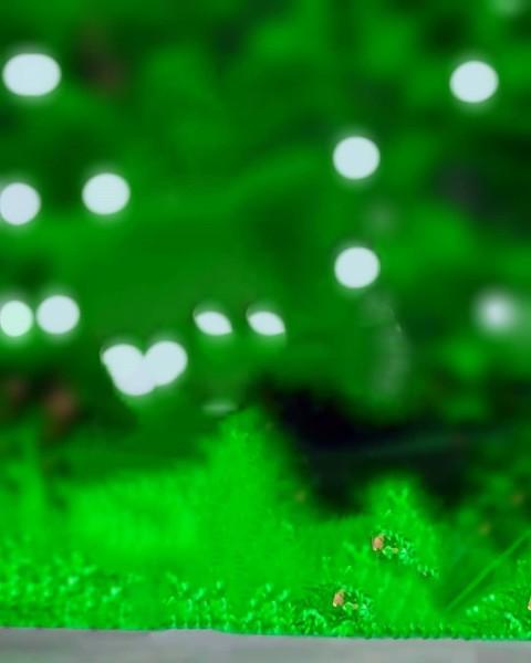 Green Blur PicsArt Editing Background Full HD Download