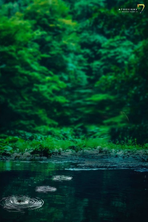 Green Effect CB Background Download