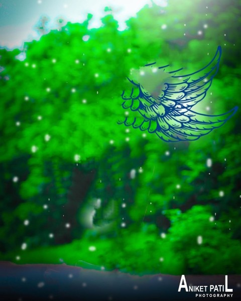 Green Wing CB Background For Picsart