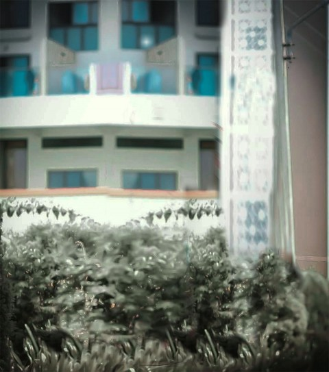House Outdoor CB Background (