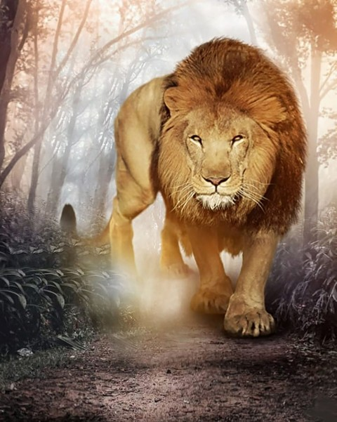 Lion Full HD CB Background Download
