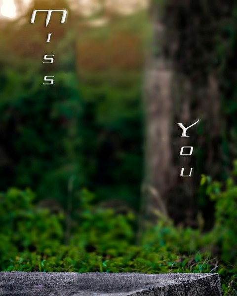 MISS You Gree CB Background Download