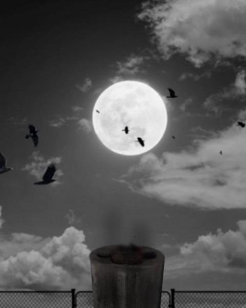 Moon PicsArt CB Editing HD Background