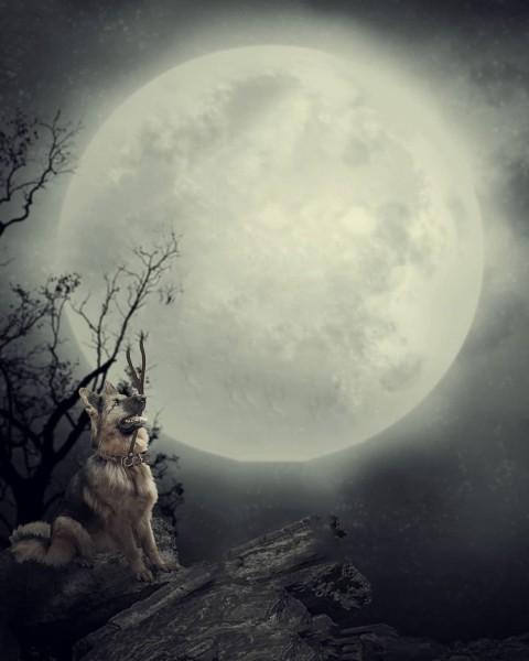 Moon PicsArt Photo Editing Background Full hd (104)