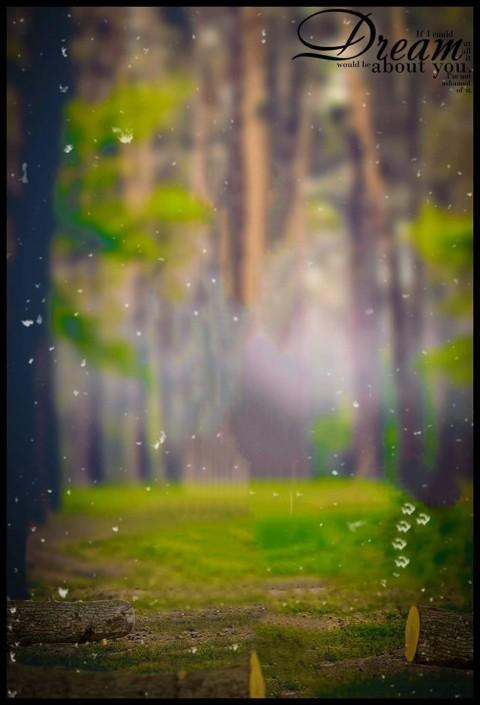 Nature Forest Picsart CB Background