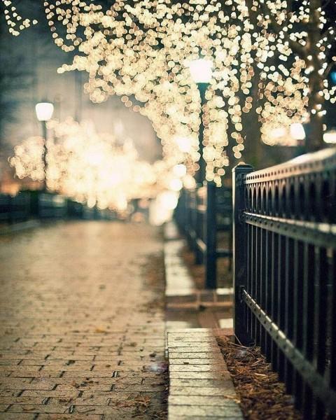 Night Outdoor Picsart Background Download