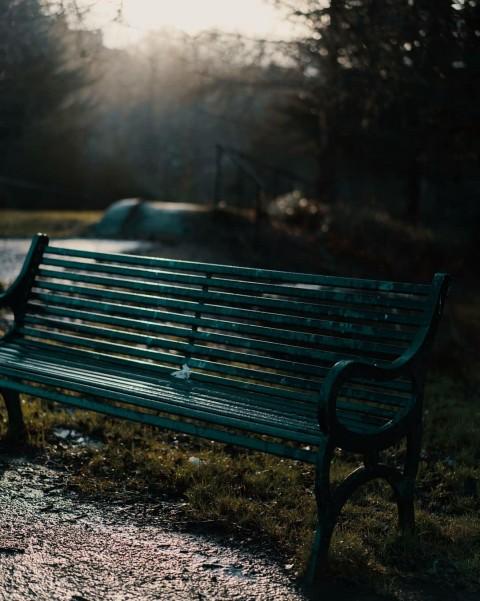 Park Chair Picsart Background