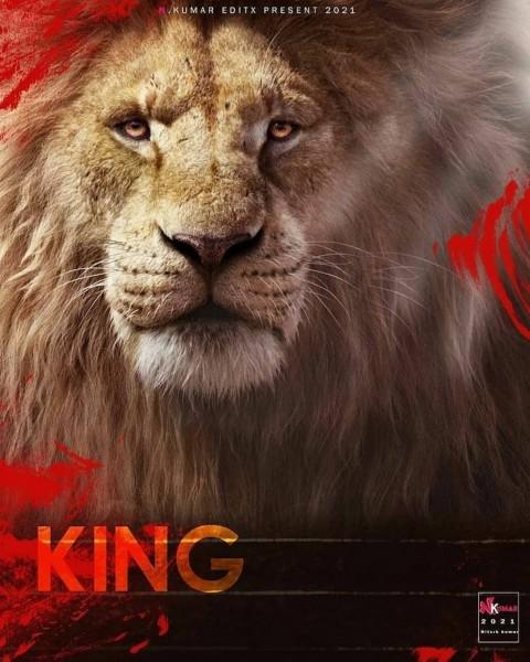PicsArt King Lion Photo Editing Background
