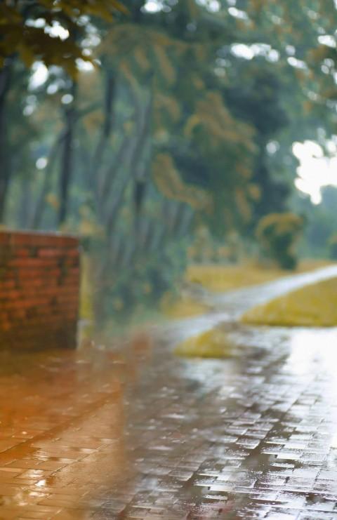 Rain Road CB Background For Photo Editing