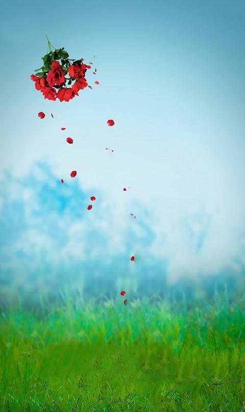 Rose Flowers Editing CB Background