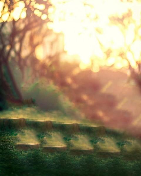 Sun Light  PicsArt Photo Editing Background