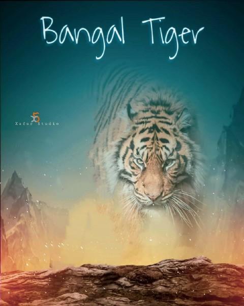 Tiger Editing Picsart Background Hd