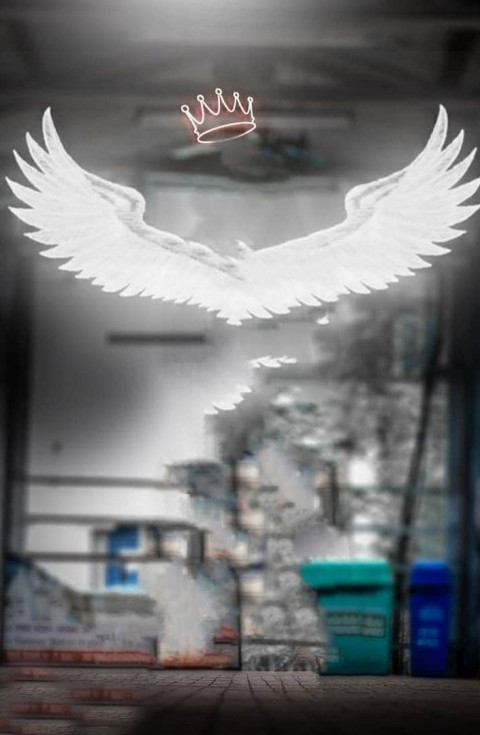 Wings Atharv Raut Background Full Hd