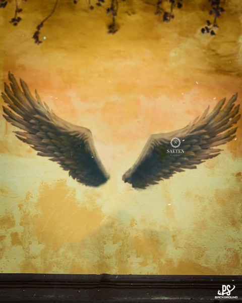 Wings CB Background Download