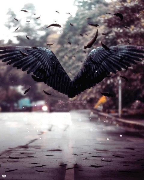 Wings PicsArt CB Editing HD Background Download