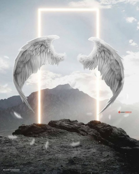 Wings PicsArt Photo Editing Background