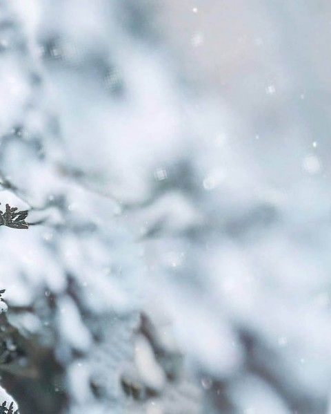 Winter Ice CB Background For Photo Editing