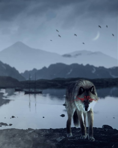 Wolf PicsArt Editing Background HD Download